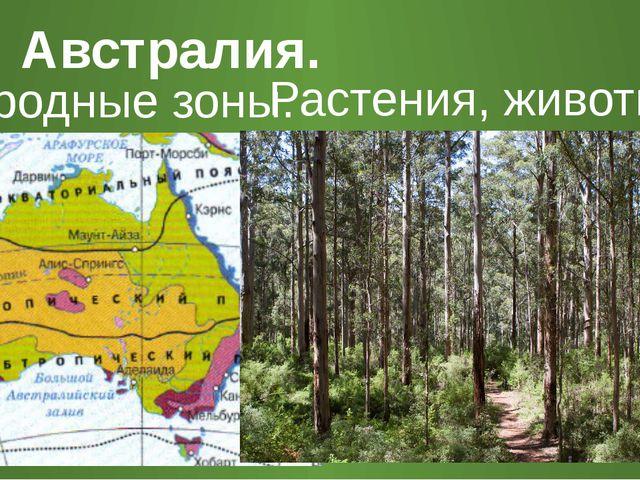 Австралия. Природные зоны. Растения, животные.