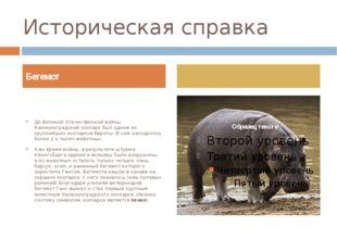 Историческая справка До Великой Отечественной войны Калининградский зоопарк б