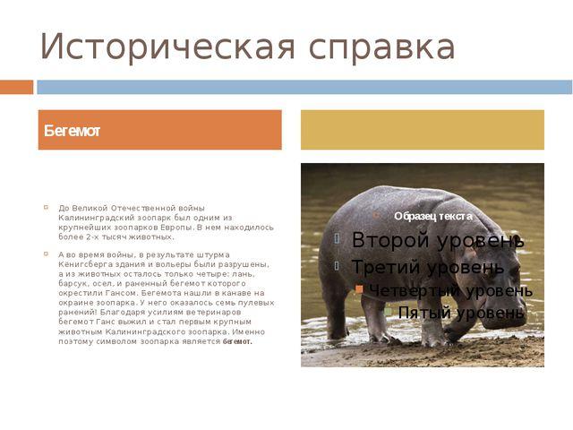 Историческая справка До Великой Отечественной войны Калининградский зоопарк б...