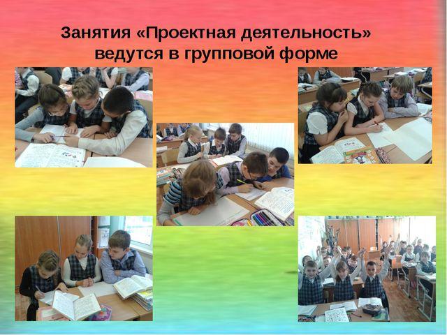 Занятия «Проектная деятельность» ведутся в групповой форме