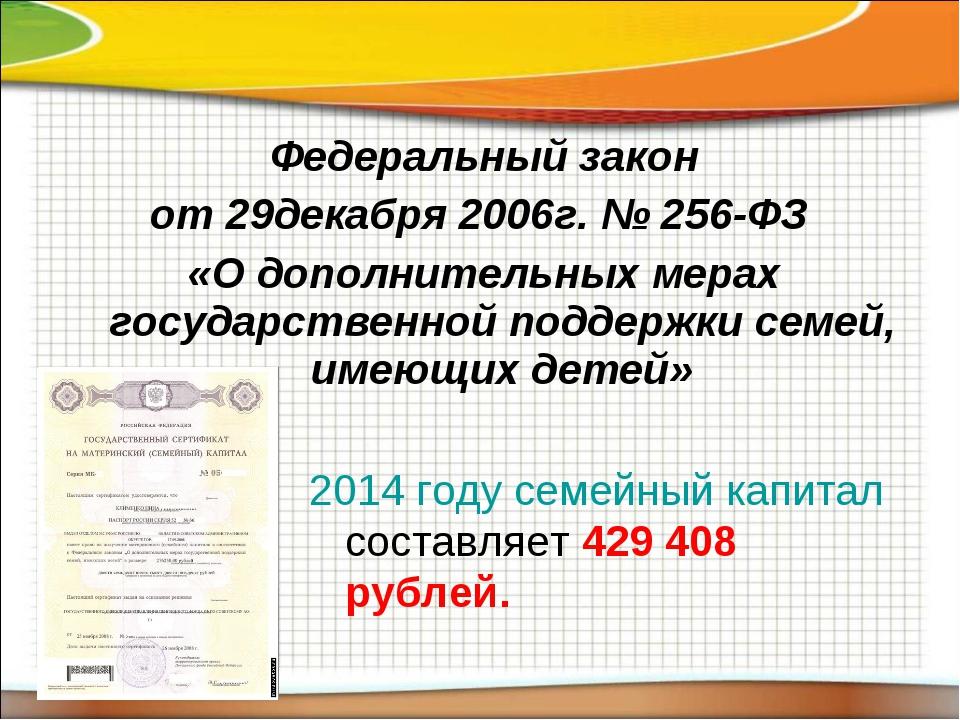 Федеральный закон от 29декабря 2006г. № 256-ФЗ «О дополнительных мерах госуда...