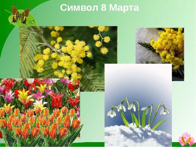 Что можно подарить? Букет цветов Украшения Духи Украшения для дома Аксессуары
