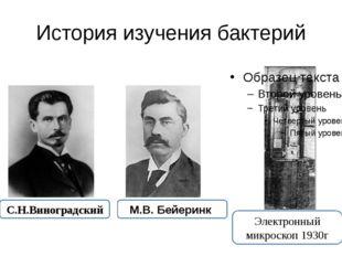 История изучения бактерий Электронный микроскоп 1930г С.Н.Виноградский М.В. Б