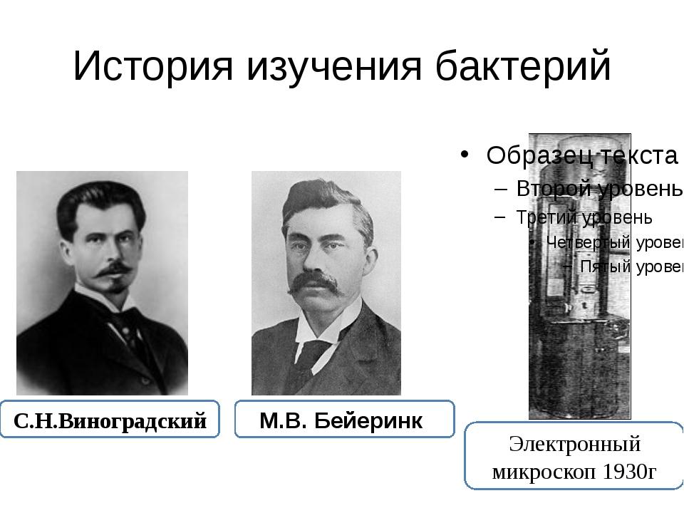 История изучения бактерий Электронный микроскоп 1930г С.Н.Виноградский М.В. Б...