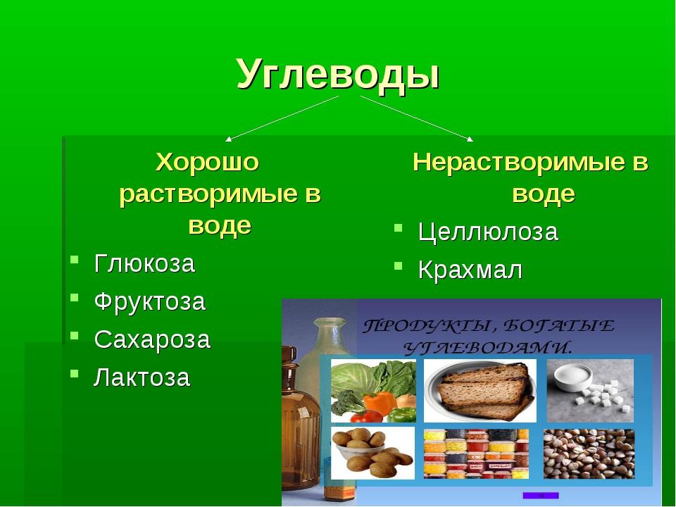 Углеводы Хорошо растворимые в воде Глюкоза Фруктоза Сахароза Лактоза Нераство...