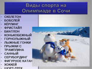 СКЕЛЕТОН БОБСЛЕЙ КЁРЛИНГ ФРИСТАЙЛ БИАТЛОН КОНЬКОБЕЖНЫЙ ГОРНОЛЫЖНЫЙ ЛЫЖНЫЕ ГОН