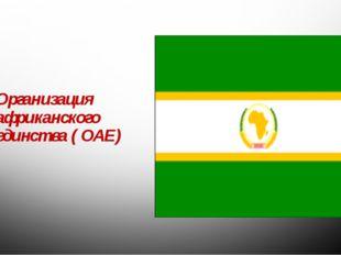 Организация африканского единства ( ОАЕ)