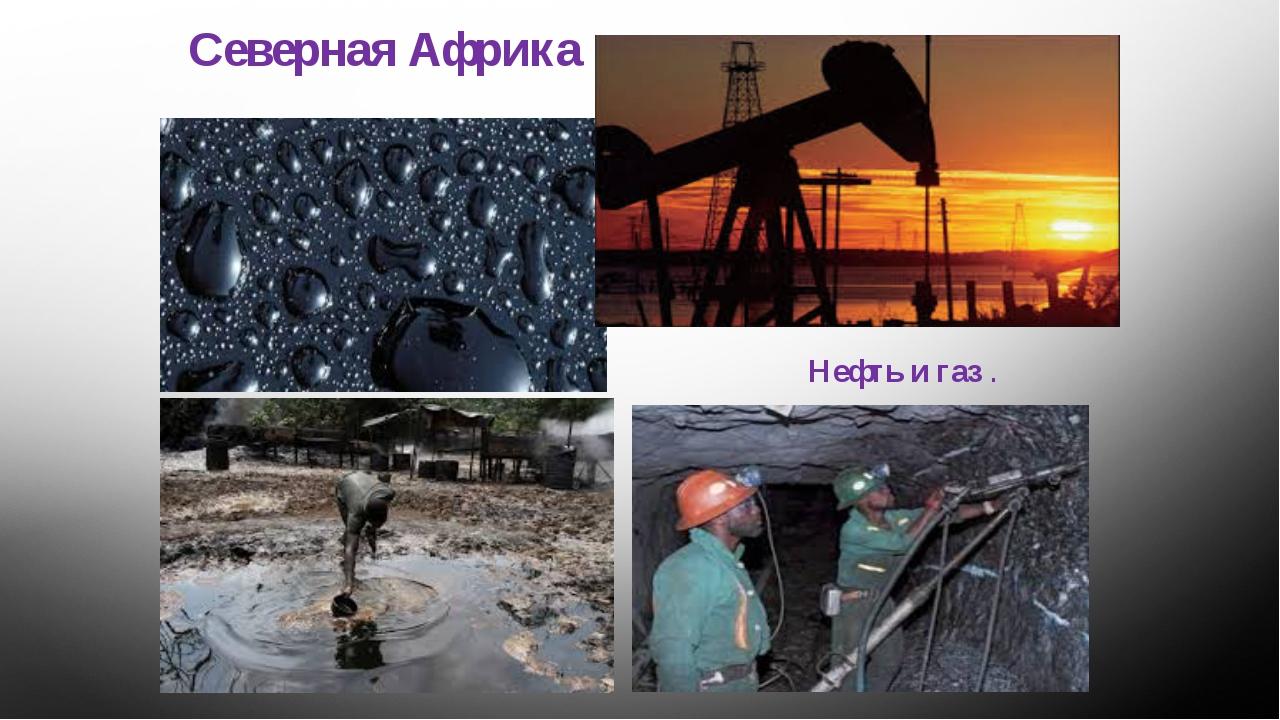 Северная Африка Нефть и газ .