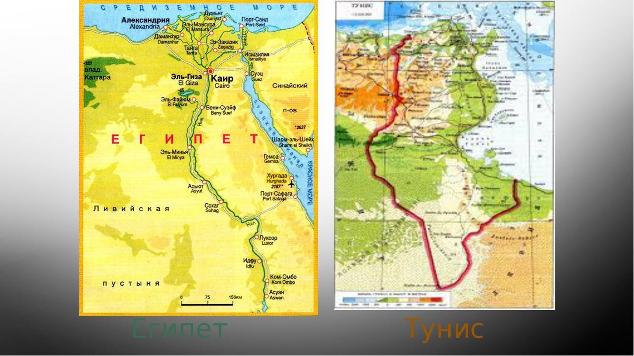 Тунис Египет