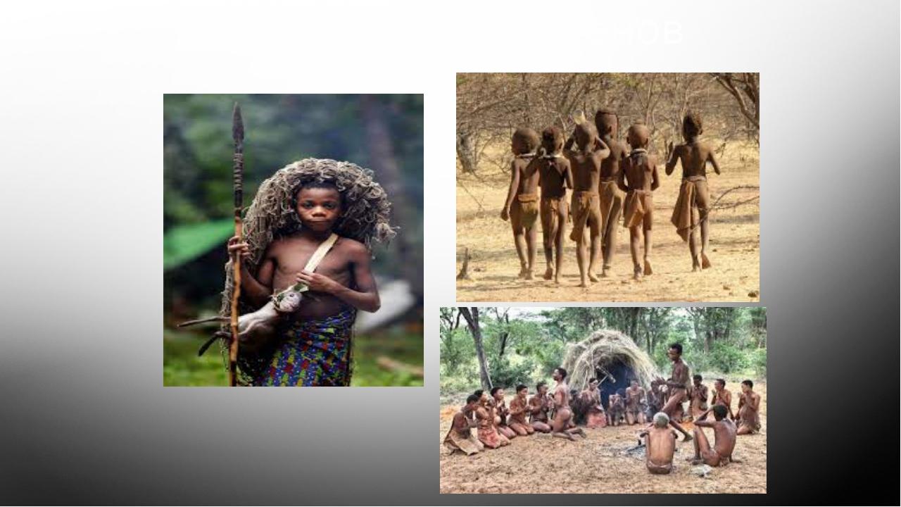 Племя Бушменов