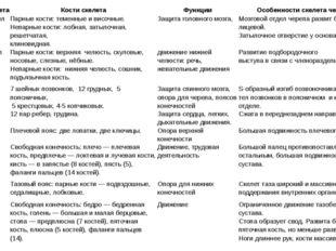 Отделы скелета Кости скелета Функции Особенности скелета человека Мозговойотд