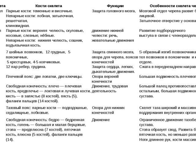 Отделы скелета Кости скелета Функции Особенности скелета человека Мозговойотд...