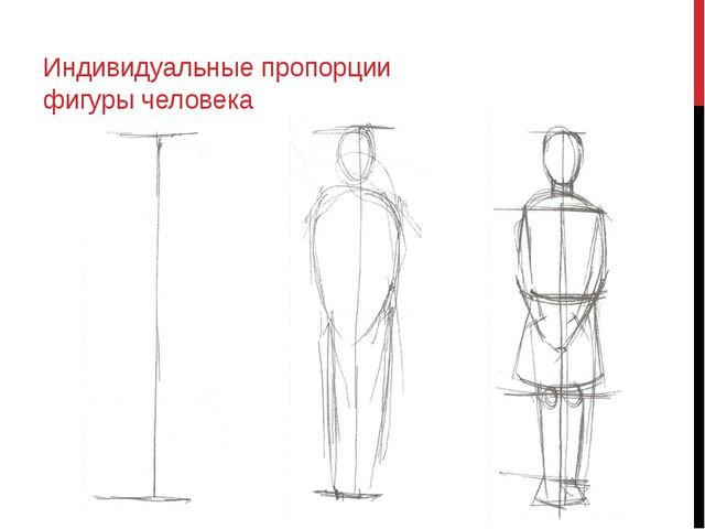 Индивидуальные пропорции фигуры человека