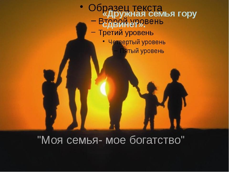 """""""Моя семья- мое богатство"""" «Дружная семья гору сдвинет»."""