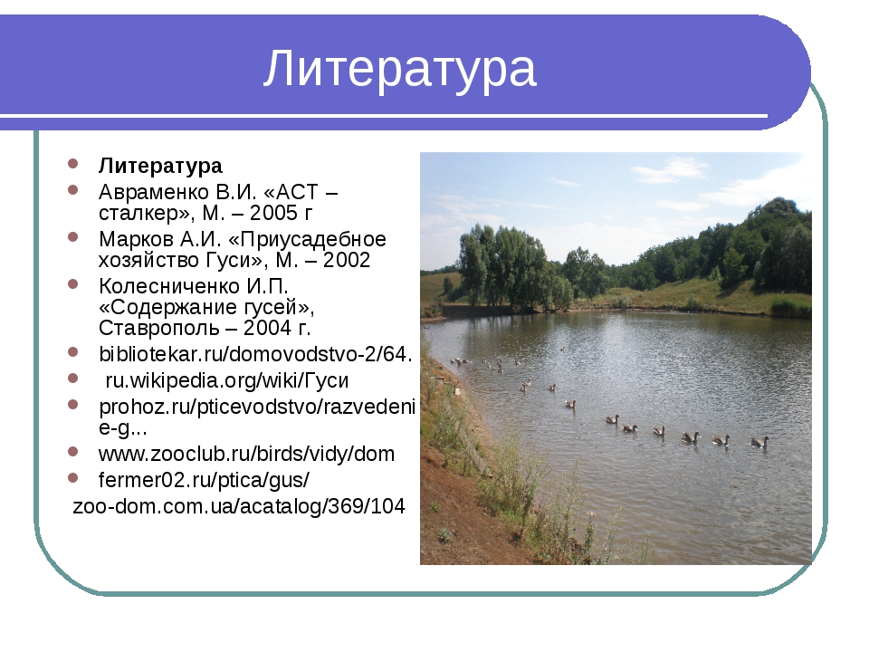 Литература Литература Авраменко В.И. «АСТ – сталкер», М. – 2005 г Марков А.И....