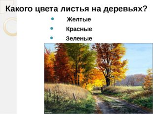 Какого цвета листья на деревьях? Желтые Красные Зеленые