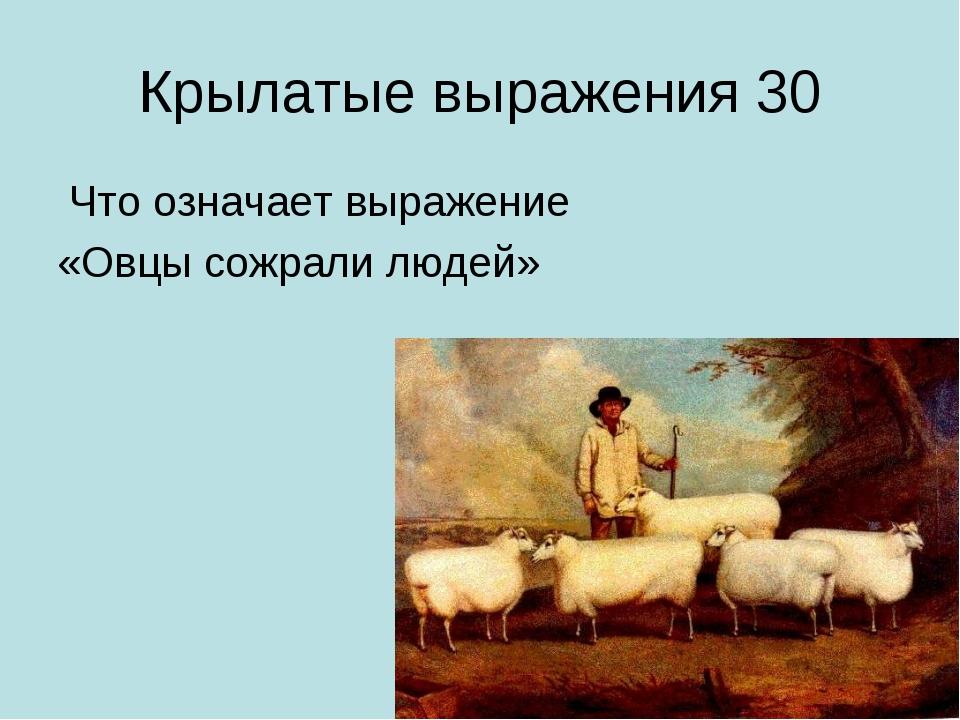 Крылатые выражения 30 Что означает выражение «Овцы сожрали людей»