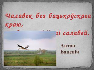 Чалавек без бацькоўскага краю, Як без песні ў гаі салавей. Антон Бялевіч
