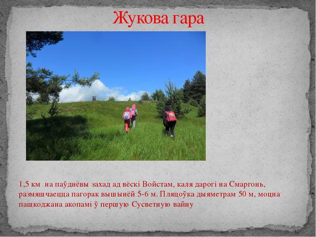 1,5 км на паўднёвы захад ад вёскі Войстам, каля дарогі на Смаргонь, размяшча...