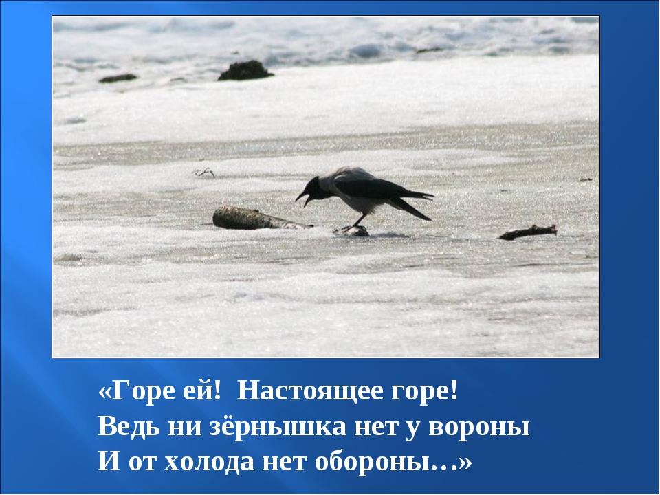 «Горе ей! Настоящее горе! Ведь ни зёрнышка нет у вороны И от холода нет оборо...