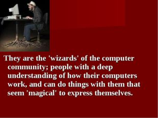 They are the 'wizards' of the computer community; people with a deep underst