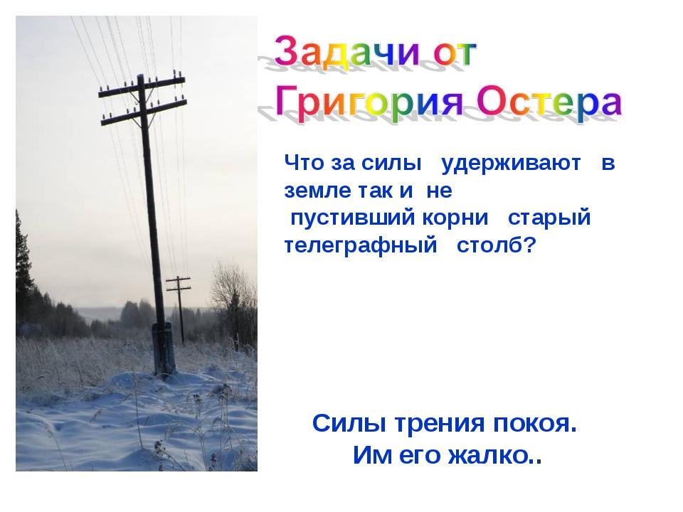 Что за силы удерживают в земле таки не пустивший корни старый телеграфный ст...