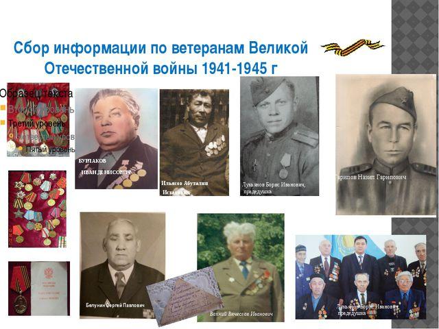 Сбор информации по ветеранам Великой Отечественной войны 1941-1945 г Белунин...