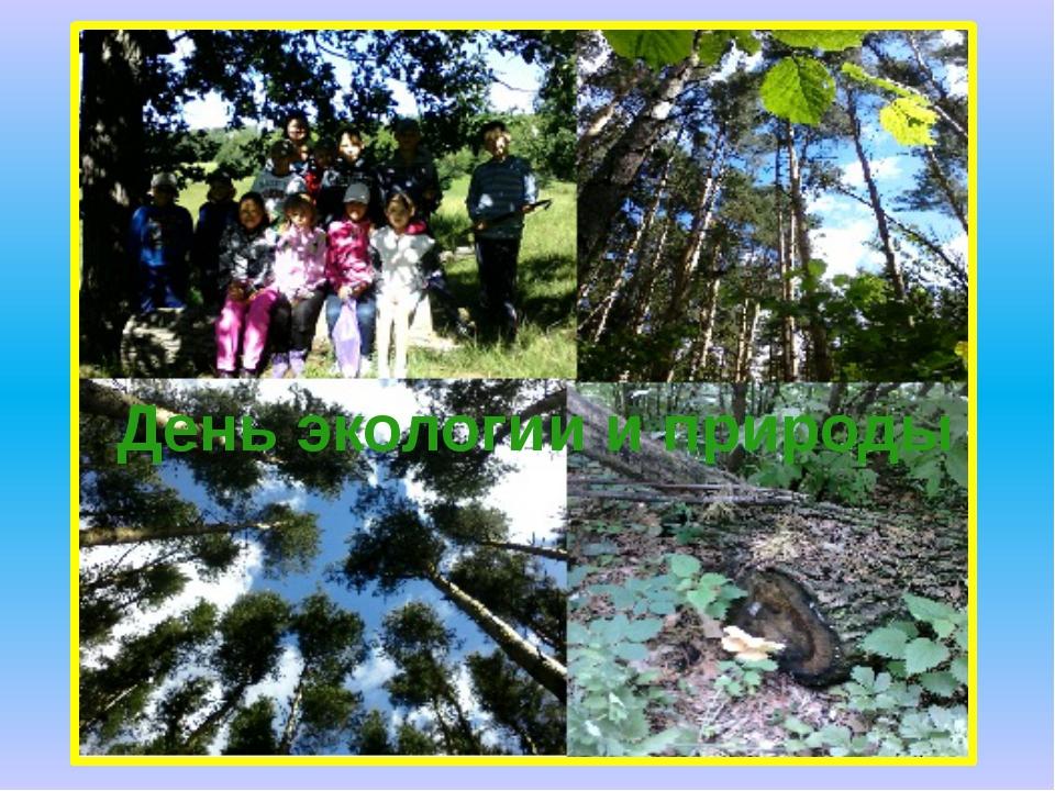 День экологии и природы
