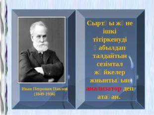Иван Петрович Павлов (1849-1936) Сыртқы және ішкі тітіркенуді қабылдап талдай