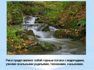 Реки представляют собой горные потоки с водопадами, узкими скальными ущельями
