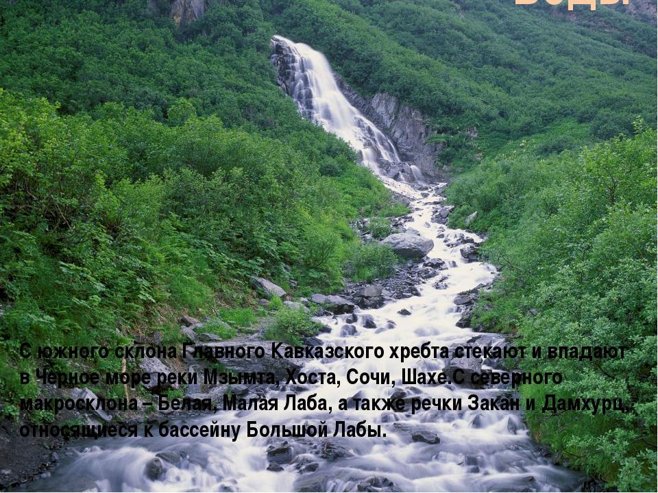 С южного склона Главного Кавказского хребта стекают и впадают в Черное море р...