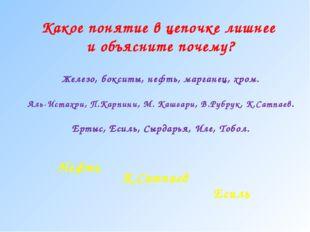 Железо, бокситы, нефть, марганец, хром. Аль-Истахри, П.Карпини, М. Кашгари, В