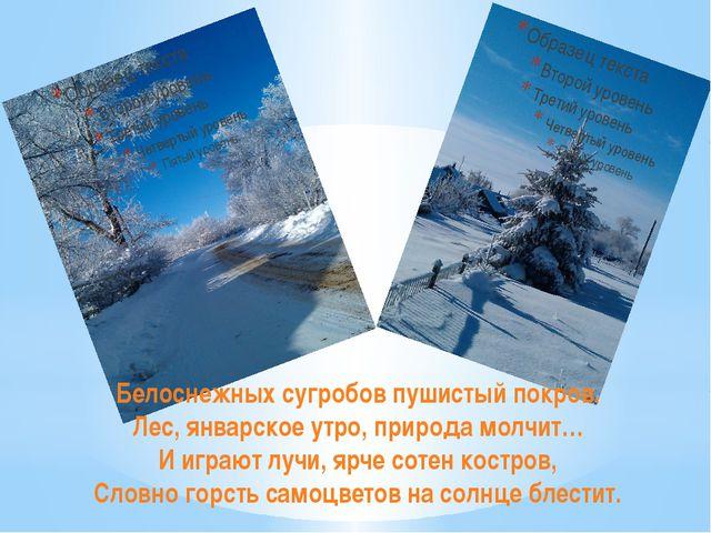 Белоснежных сугробов пушистый покров. Лес, январское утро, природа молчит… И...