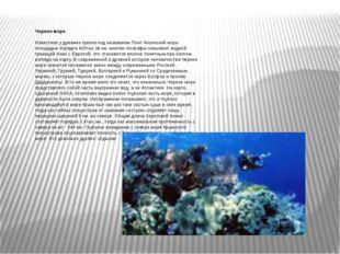 Черное море Известное у древних греков под названием Понт Аксинский море пло