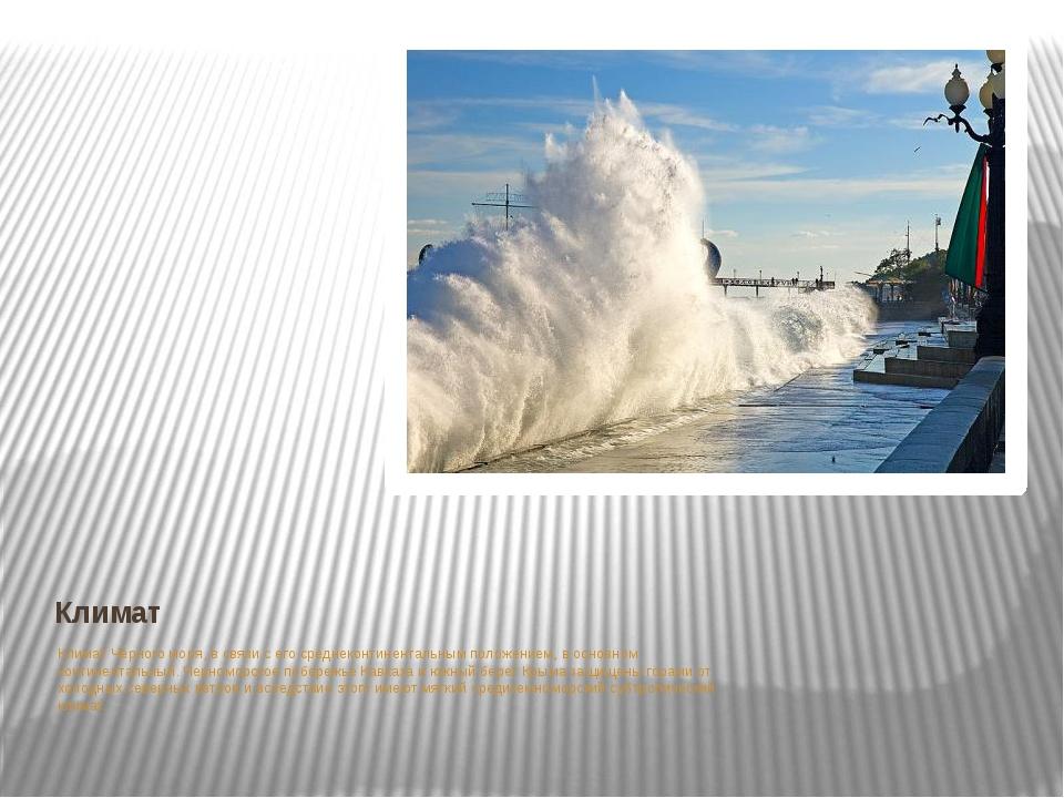 Климат Климат Чёрного моря, в связи с его среднеконтинентальным положением, в...
