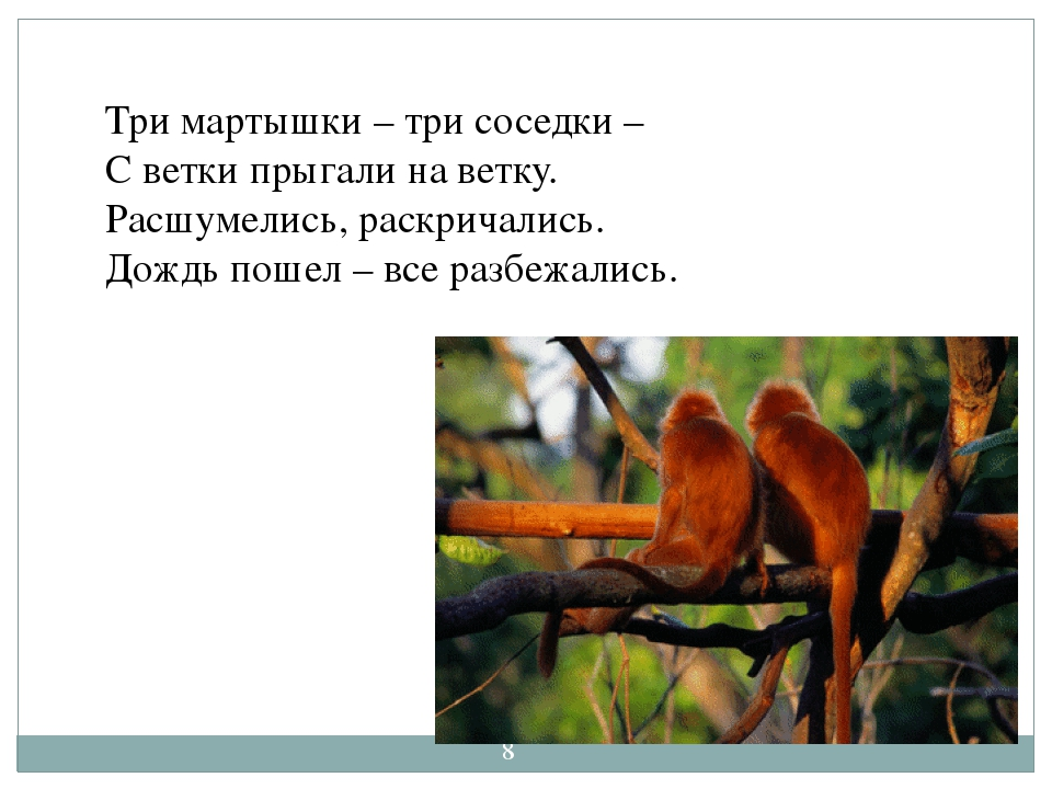 http://aida.ucoz.ru Три мартышки – три соседки – С ветки прыгали на ветку. Р...