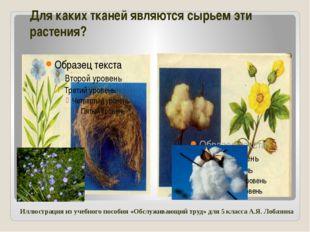 Для каких тканей являются сырьем эти растения? Иллюстрация из учебного пособи