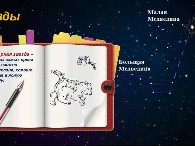 Звёзды Полярная звезда – одна из самых ярких звёзд нашего небосклона, хорошо...