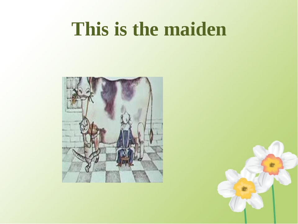 This is the maiden