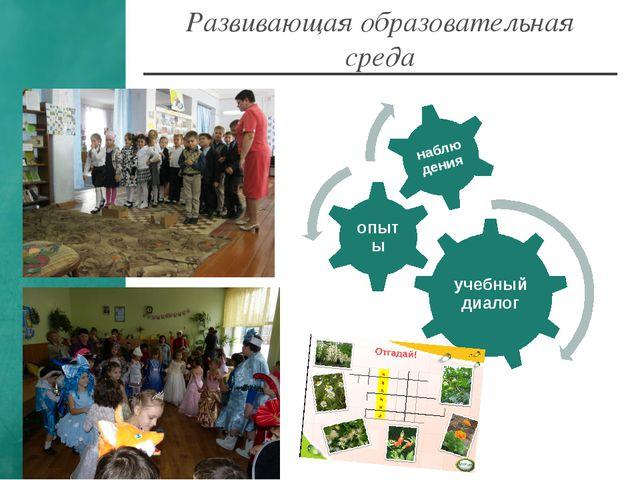 Развивающая образовательная среда