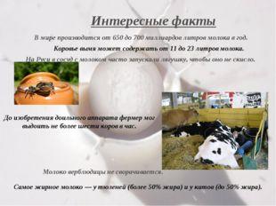 Интересные факты В мире производится от 650 до 700 миллиардов литров молока в