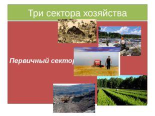 Три сектора хозяйства Первичный сектор