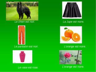 La Jupe est noire. Le chien est noir. Le pantalon est noir. L'orange est noi