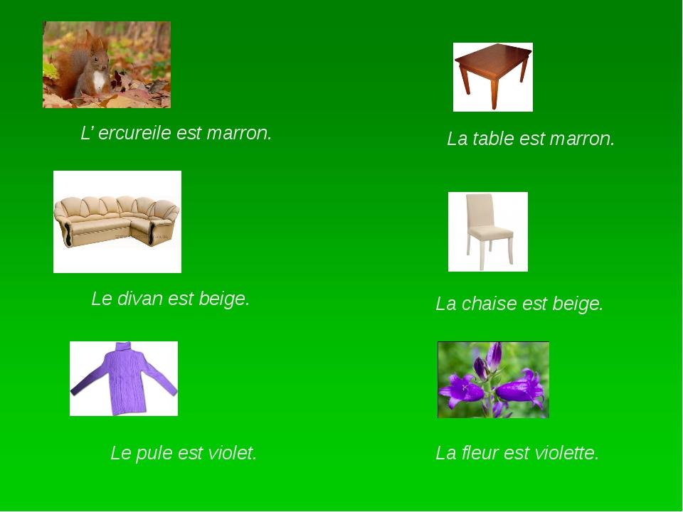 L' ercureile est marron. Le pule est violet. Le divan est beige. La table es...