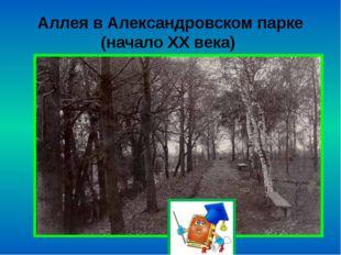 Аллея в Александровском парке (начало ХХ века)