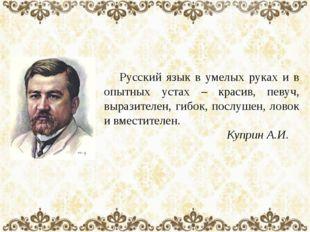 Русский язык в умелых руках и в опытных устах – красив, певуч, выразителен,