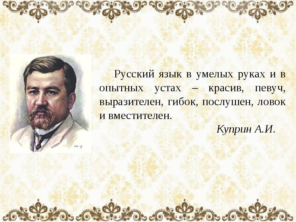 Русский язык в умелых руках и в опытных устах – красив, певуч, выразителен,...