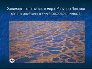 Занимает третье место в мире. Размеры Ленской дельты отмечены в книге рекордо