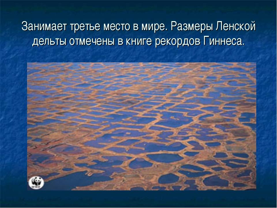 Занимает третье место в мире. Размеры Ленской дельты отмечены в книге рекордо...