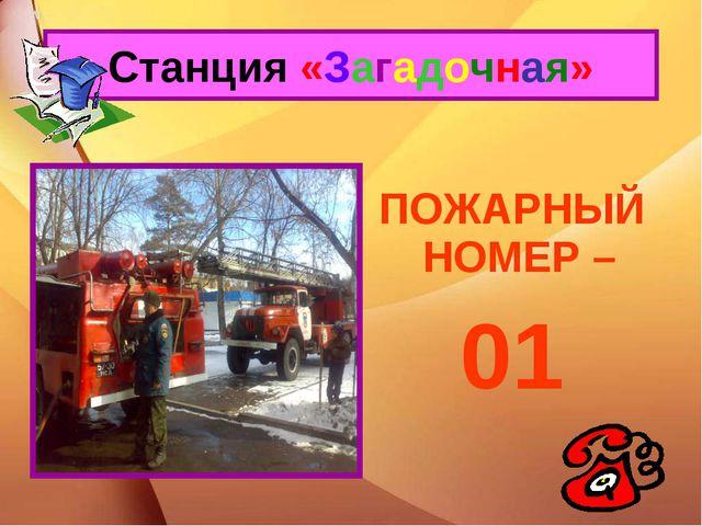ПОЖАРНЫЙ НОМЕР – 01 Станция «Загадочная»